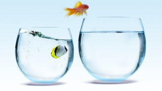 خطوات أساسية لنجاح عملية التغيير الشاملة في العمل